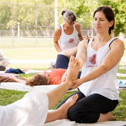 Summer Program: Thai Massage Levels 1-6